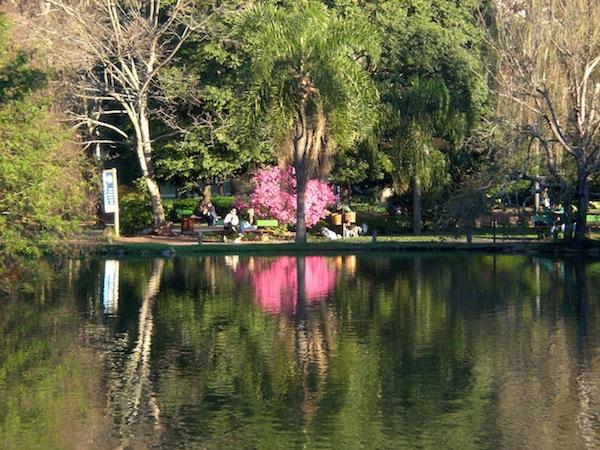 Parque Moinhos de Vento (Parcão), Inverno de 2008. Saudades