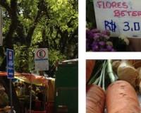 Feira Ecológica da Redenção e receita de Cozido de Legumes