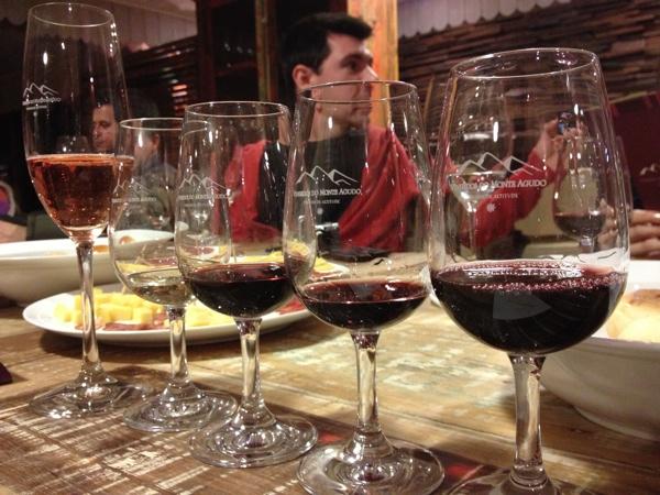 monte-agudo-vinhos