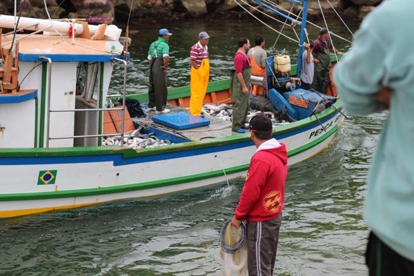 tainha-instituicao-mane-barco-chegando2
