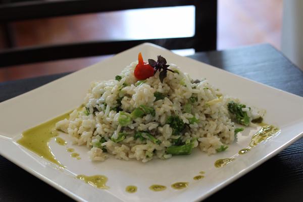 rita-maria-risoto-vegetariano-brocolis-alcaparras